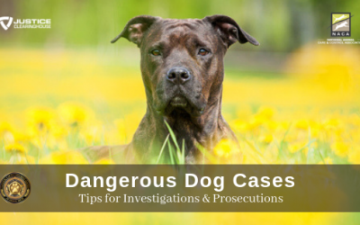 Dangerous Dog Cases, Tips on Investigations and Prosecution